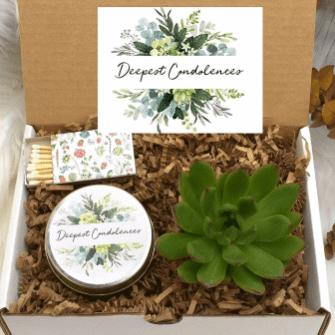 Condolence succulent gift box