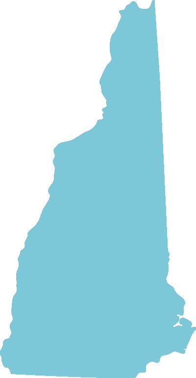 New Hampshire state graphic